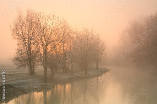 Fotografie, Obraz  Foggy river Thames near Oxford on a winter morning.