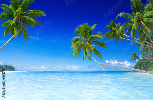 Staande foto Strand Tropical Paradise