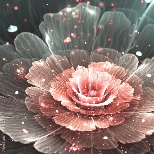 rozowy-i-szary-streszczenie-kwiat