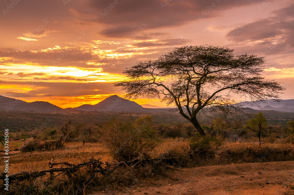 Fototapety, obrazy: Evening view of the territory of the tribe Bana