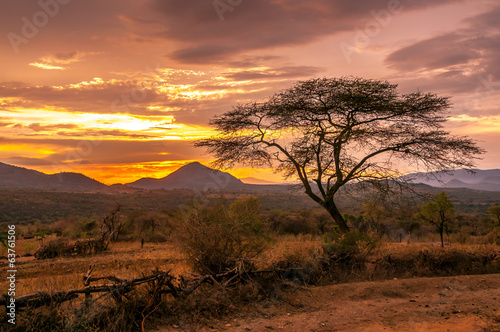 Spoed Fotobehang Afrika Evening view of the territory of the tribe Bana