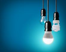 Hanging Tungsten Light Bulb, E...