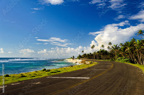 Poster South America Country Coastal Road and Palm Trees