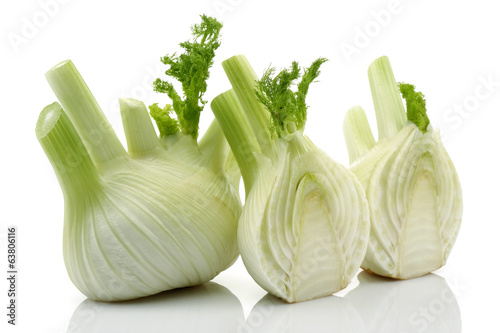 Two Half Fresh Fennel and Fresh Fennel