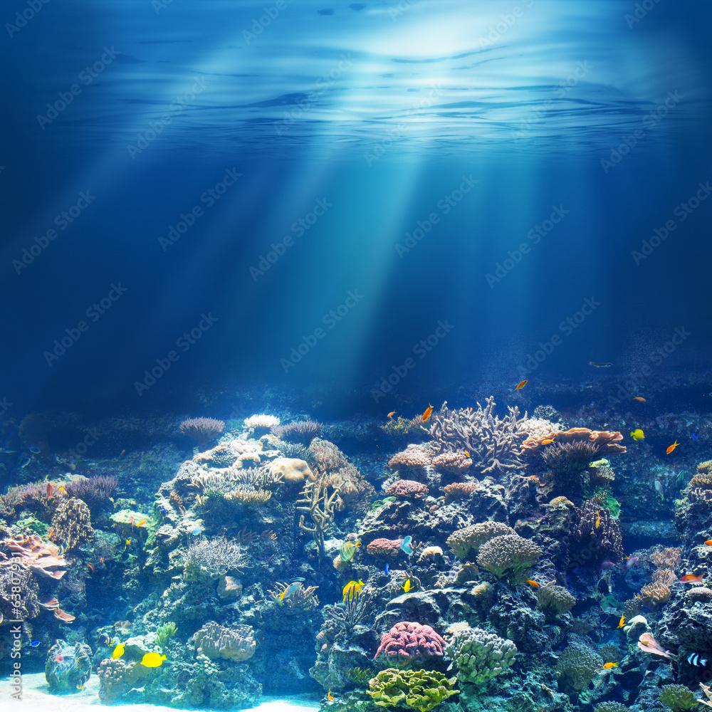Fototapeta Sea or ocean underwater coral reef