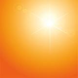 Gegenlicht und Sommerhitze