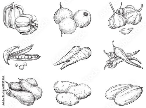 Fotografie, Obraz  Vector set 1 of vegetables at engraving style