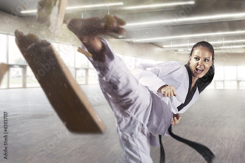 Obrazy Karate   applying-focus-and-power-martial-arts
