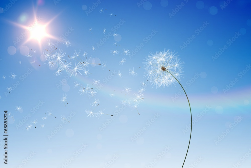 Fototapety, obrazy: Digitally generated dandelions against blue sky