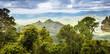 canvas print picture - Queensland Rainforest
