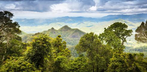 Prašuma Queenslanda