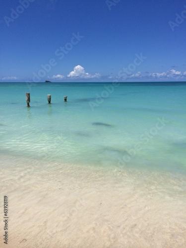Foto op Plexiglas Caraïben Tropical sandy beach of the Caribbean island