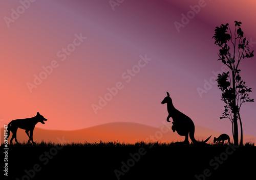 Garden Poster Brown australia kangaroos
