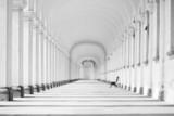 Długa barokowa kolumnada w tonacji czarno-białej - 63953379
