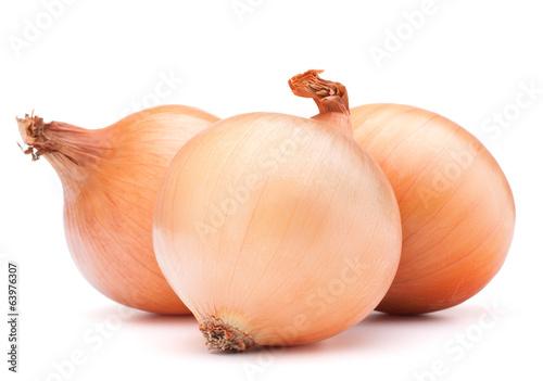 Fototapeta Gold onion vegetable bulbs obraz