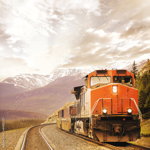 Freight train in Canadian rockies. Wallpaper Mural
