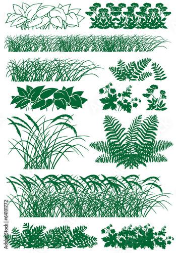 Slika na platnu grass
