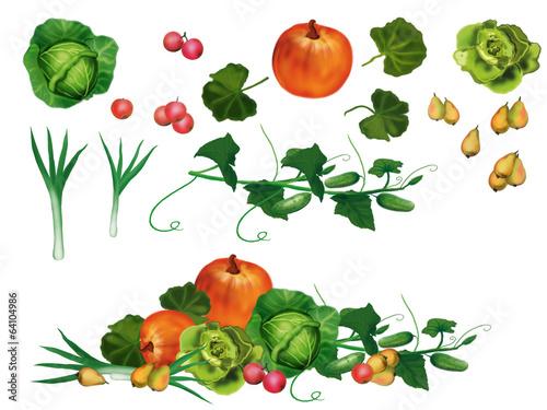Fototapeta vegetables obraz
