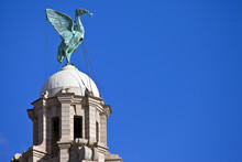 Liver Bird Perched On The Roya...