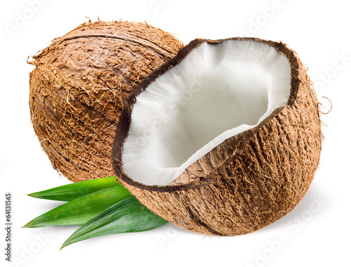 Foto auf AluDibond Palms Coconut with leaf on white background