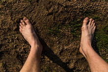 Male Bare Feet On The Way