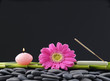 red gerbera with candle and grove on pebbles