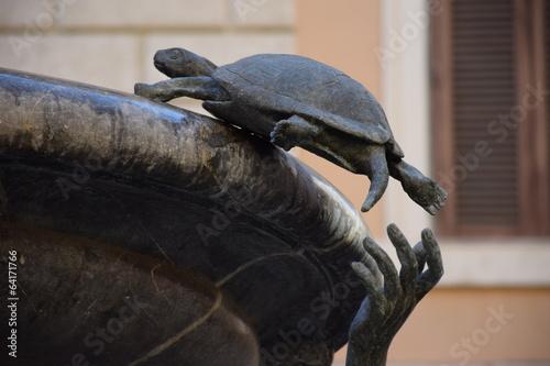 Cadres-photo bureau Tortue Fontana delle tartarughe