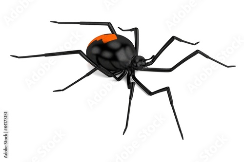 Photo  realistic 3d render of latrodectus hasselti