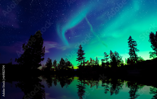 Wall Murals Northern lights Northern lights aurora borealis in the night sky