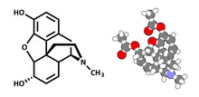 Morphine Pain Drug Molecule. H...