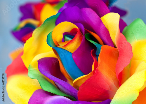 Fototapety, obrazy: fake rose flower