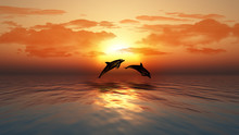 Sunset Ocean With Dolphins Jum...