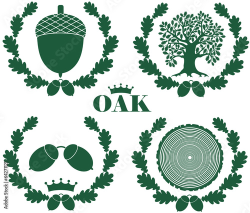 Fotografía  Oak