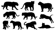 Tiger Silhouettes