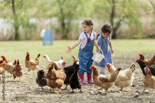 Foto  Two little girl feeding chickens