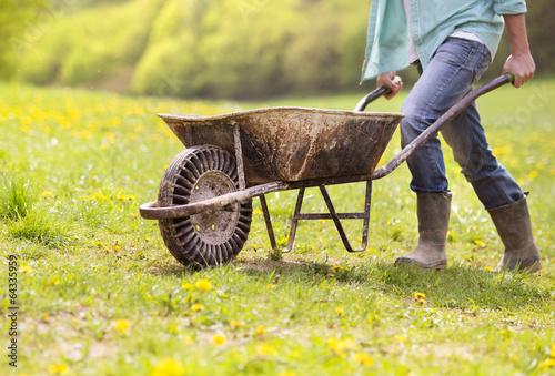 Carta da parati Farmer with wheelbarrow