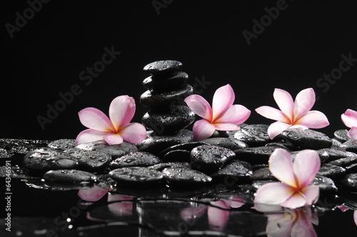 Aluminium Prints Spa Frangipani with zen stone for Spa concept