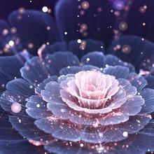Pink And Gray Fractal Flower - Digital Artwork