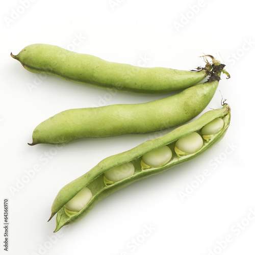 Fotografia Broad beans on a white background