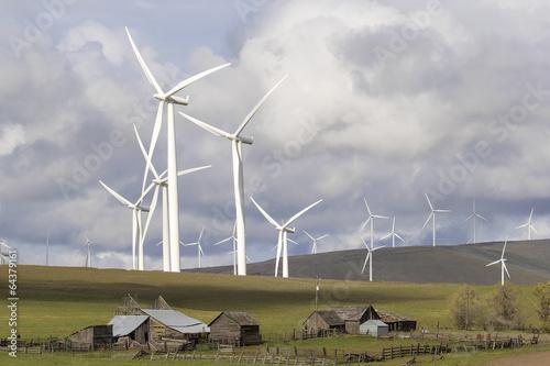 Fotografie, Obraz  Wind Farm by Cattle Ranch in Washington State