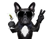 Fototapeta Dogs - peace cocktail dog