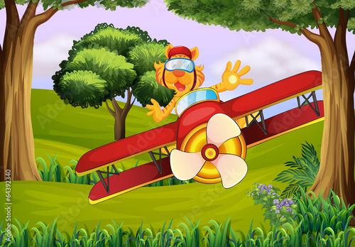 Papiers peints Avion, ballon A plane at the forest with a tiger