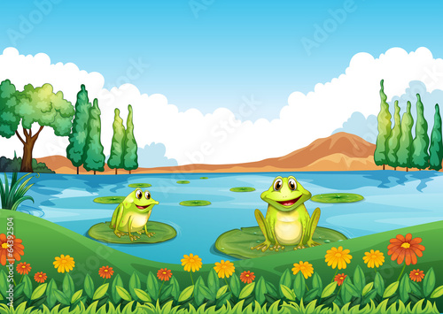 Two playful frogs at the pond Fototapeta