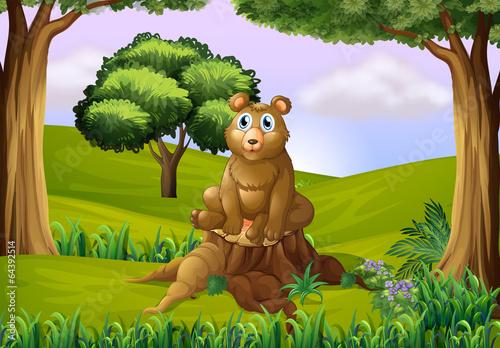 Fotobehang Beren A fat bear above the stump