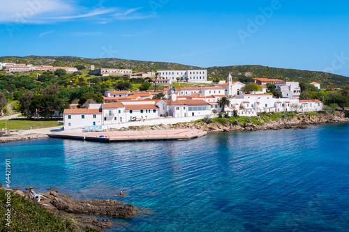 Photo  Asinara island in Sardinia, Italy