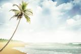 beach-018 - 64426140