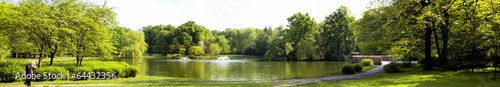 Fototapeten Wald Lush forest with pond