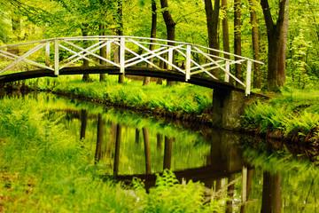 FototapetaFluss mit weißer Holzbrücke im Wald