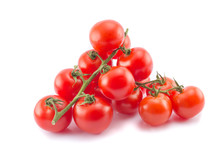 Two Cocktail Tomato Branches Isolated