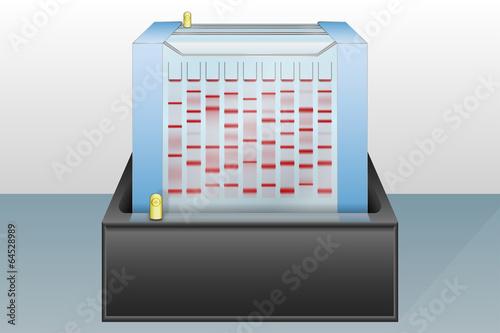 Obraz na plátně Gel electrophoresis device vector illustration
